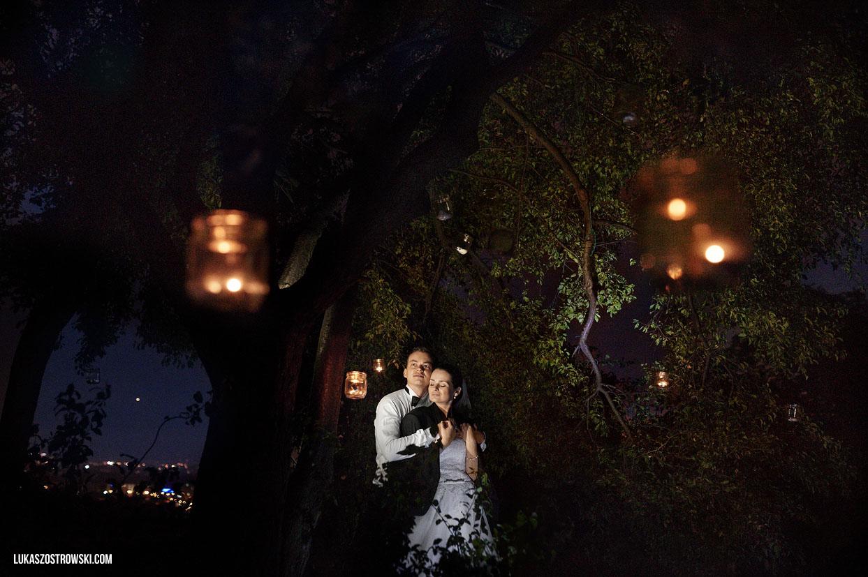 Fotografia Ślubna pod drzewem